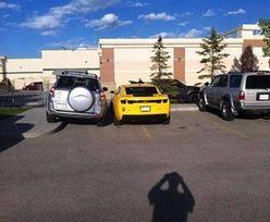 Mistrzowie parkowania. Ktoś wreszcie nauczył ich rozumu