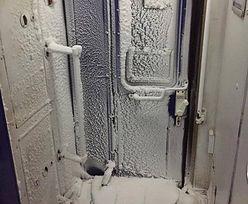 """Zima zaatakowała podróżnych w pociągach. """"Sorry, taki mamy klimat"""""""