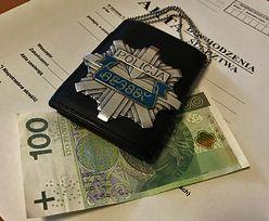 Wrzucił policjantom 100 zł. Grozi mu do 8 lat więzienia
