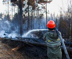 """Katastrofa ekologiczna w Czarnobylu. """"Ogień jest poza kontrolą"""""""