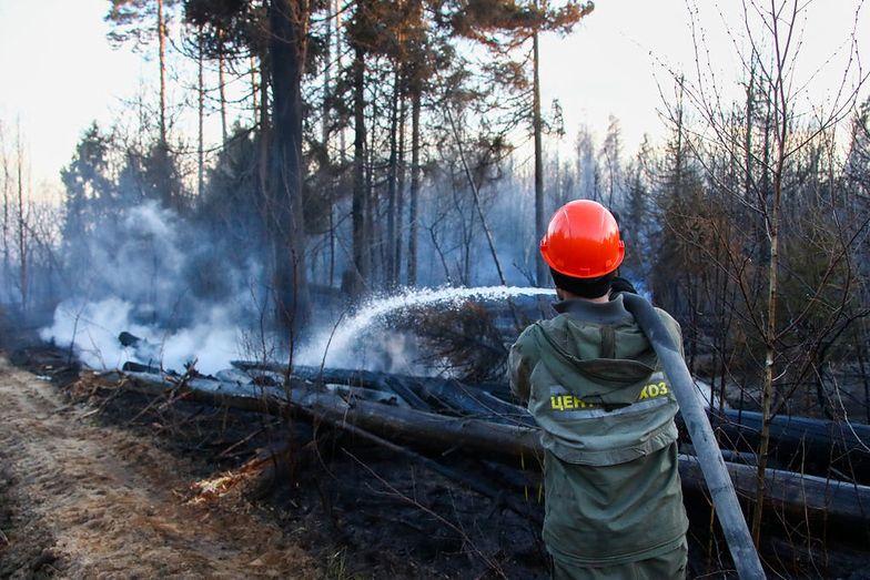 W Czarnobylu wciąż szaleje pożar