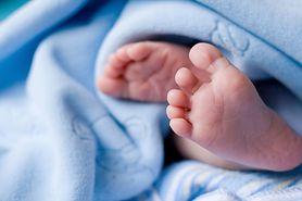 Metoda leczenia niepłodności AneVivo dostępna jest już w Polsce