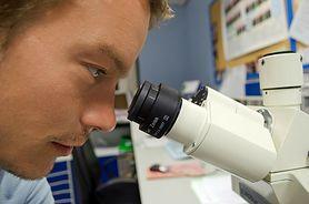 Diagnostyka chorób nadnerczy. Jaką rolę pełnią hormony nadnerczy?