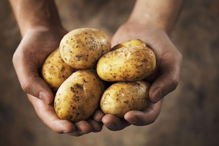 Zalety ziemniaków