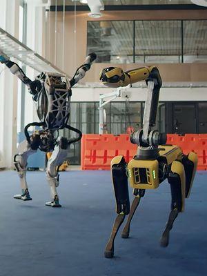 Rodzina tańczących robotów stała się viralem