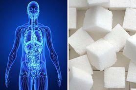 Przeprowadź cukrowy detoks. Schudniesz i poprawisz zdrowie