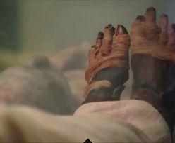 Przyjrzeli się szczątkom faraona Ramzesa II. Czegoś mu brakuje