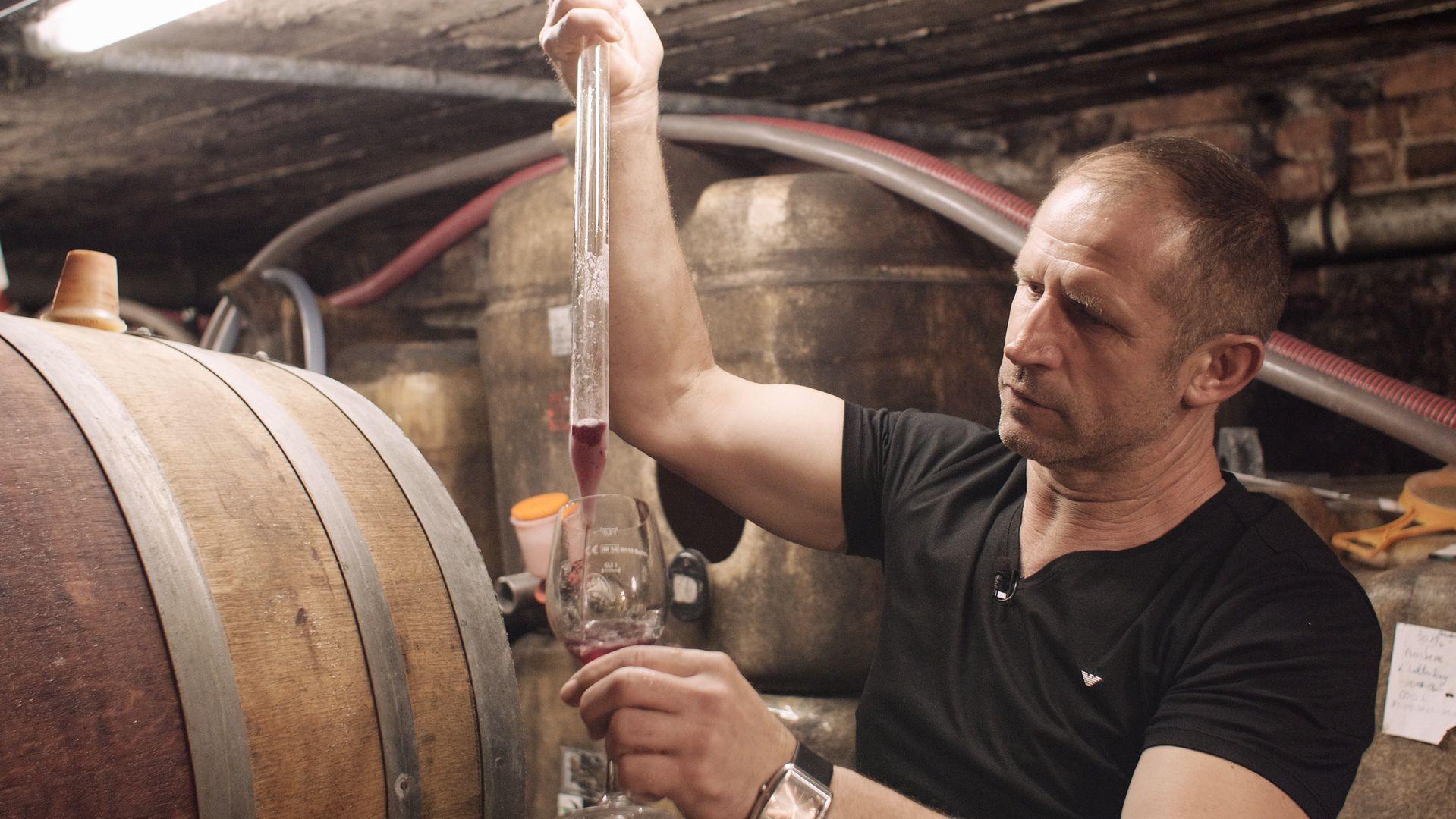 Andrzej Greszta, polski winiarz z doliny Mozeli w Niemczech