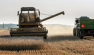 Latami truł siebie i konsumentów opryskami. Polski rolnik rekordzistą w zawartości chemii w moczu.