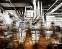 Wiadomości: Miliardy z piwa, czyli gospodarcze dobrodziejstwa płynące z chmielu