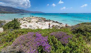 Elafonissi - plaża inna niż wszystkie