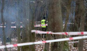 Myśliwiec MiG-29 rozbił się w okolicach Kałuszyna na Mazowszu