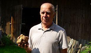 Trufle zdarzają się w małopolskich lasach. Ojciec szwagra pana Czesława przynosił je czasem do domu