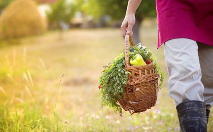 Dla 60 proc. konsumentów zdrowa żywność to ta bez konserwantów