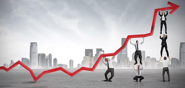 W 2013 roku nieznacznie mniej firm niż rok wcześniej