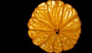 W pomarańczowym raju