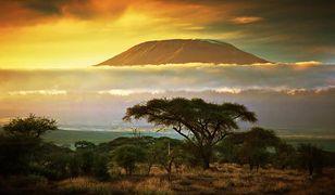 Szpik na Szczyt - wyprawa na Kilimandżaro