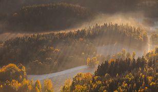 Piękna złota jesień. Niezwykłe zdjęcia z Polski