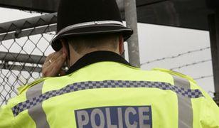 Jedenaście osób rannych w wypadku kolejki górskiej w Wielkiej Brytanii