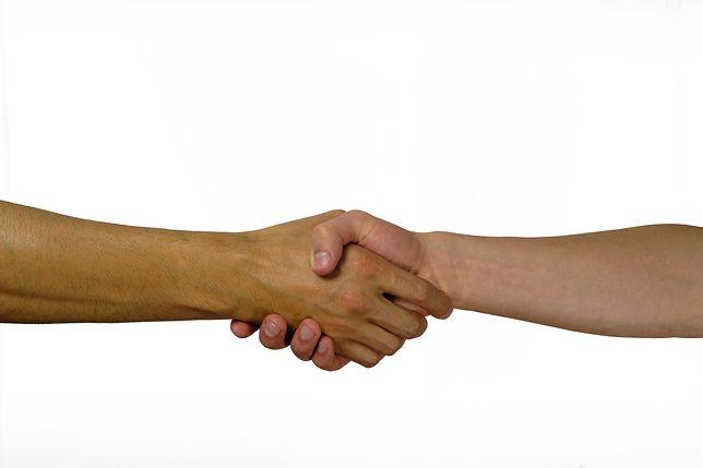 Jedna cena, jedna umowa, jedna płatność za wszystkie usługi. To wszystko w ramach Orange Love