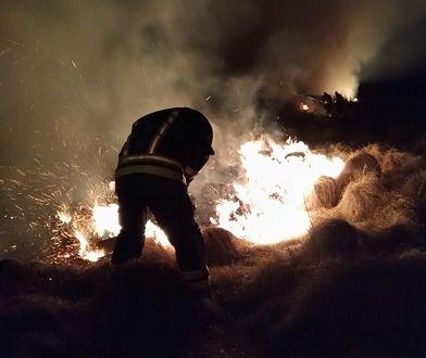 Park w Biebrzy wciąż płonie. Rząd ma pomóc