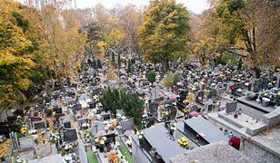 Epidemia przyspiesza. Co z cmentarzami na Wszystkich Świętych?