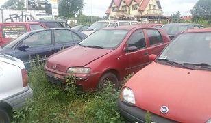 """ZDM usuwa wraki z warszawskich ulic. """"Rocznie to niemal 800 pojazdów"""""""