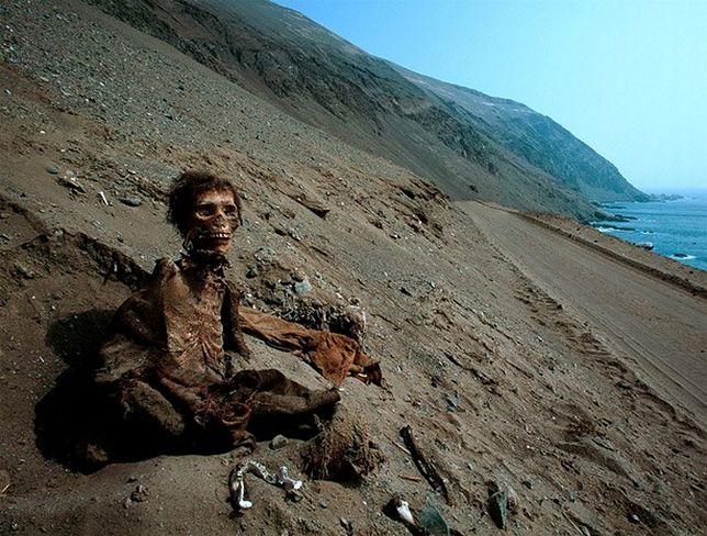 Według badań, pierwsze mumie mumifikowane były w Ameryce Południowej