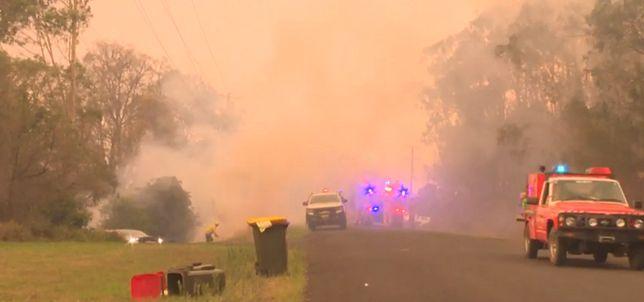 Australia. Katastrofa samolotu gaśniczego