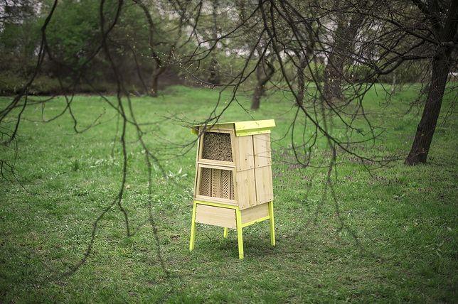 W Warszawie staną hotele dla pszczół!