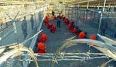 Potter trafił do Guantanamo
