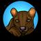 FossaMail icon
