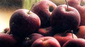 Oczyść swoje jelita. Pij miksturę na bazie jabłek (WIDEO)