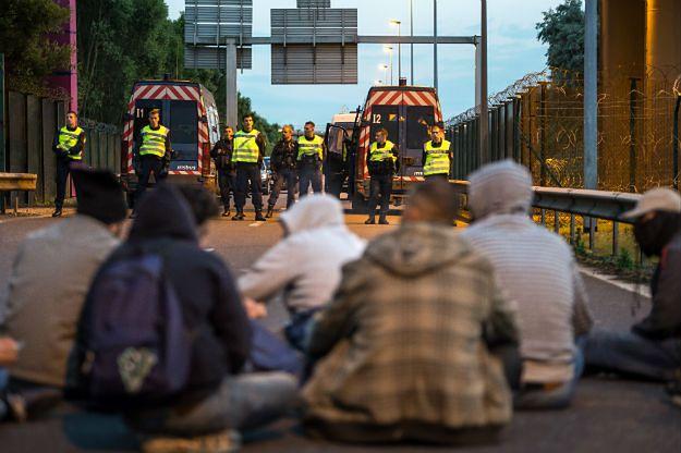 Imigranci blokują wjazd do Eurotunelu w Calais