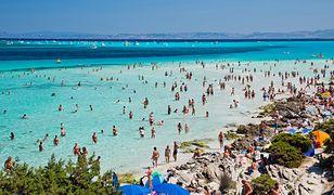Sardynia walczy z plagą na swoich plażach