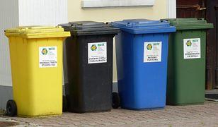 Większość Polaków popiera segregowanie śmieci. Badanie Ariadny