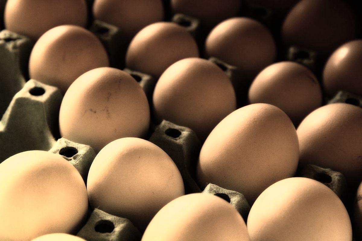 Sieci walczą jajami o serca wrażliwych ekologicznie klientów.