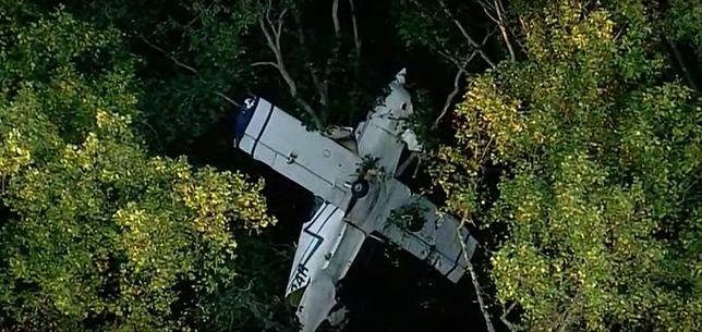 Mały samolot uderzył w drzewa w stanie Maryland, w USA
