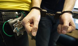 Policjanci zatrzymali podejrzanego