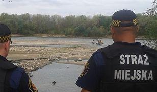 Strażnicy miejscy zabezpieczają prace archeologiczne na prawym brzegu Wisły