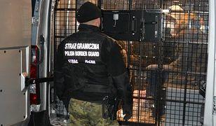 Śląskie. Pogranicznicy zatrzymali nielegalnych migrantów