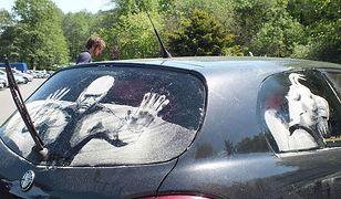 Dlaczego warto myć samochód?