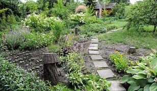 Sprzedaż ogródka, altany czy drzew bez PIT