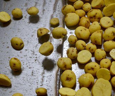 Sieci mocno korygują ceny ziemniaków w promocji. Wzrosty są na poziomie dwucyfrowym