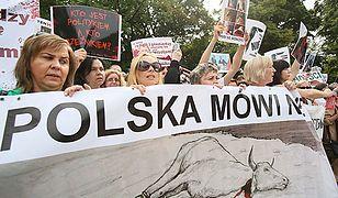 Protest przeciwko legalizacji uboju rytualnego