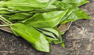 Liście możemy spożywać na surowo w postaci sałatki, dodatku do kanapek, twarogu czy ziemniaków.