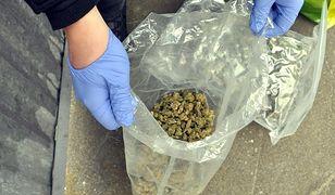 Policja przejęła blisko 1,5 kg narkotyków [WIDEO]