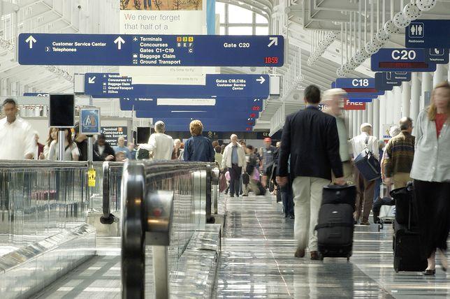 Psy uwięzione na lotnisku w Chicago