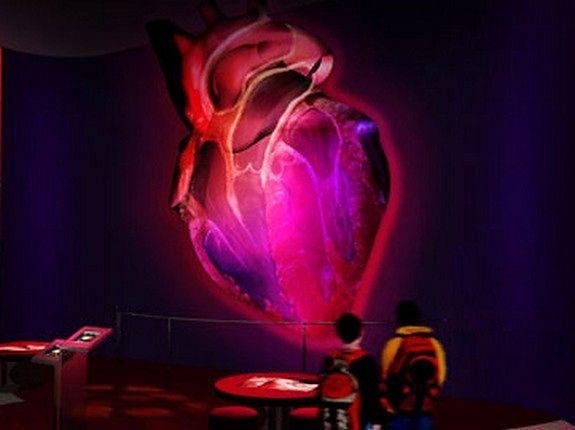 Zrób żarówkę, zajrzyj do wnętrza serca