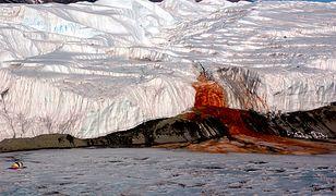 """Zagadka """"krwawych wodospadów"""" na Antarktydzie rozwiązana"""